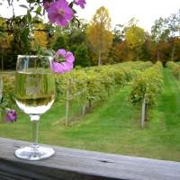 wine1[1]
